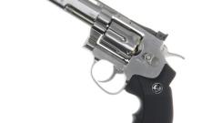 Revolver – Dan Wesson